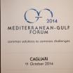 Mediterranean Gulf Forum t-85